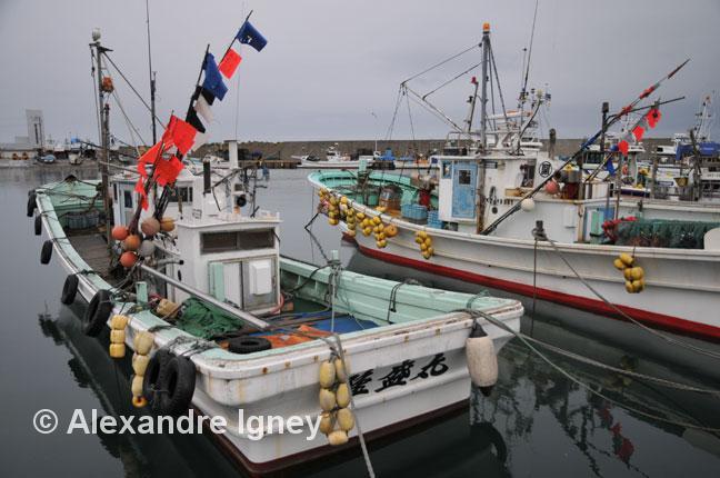 japan-fishing-industry