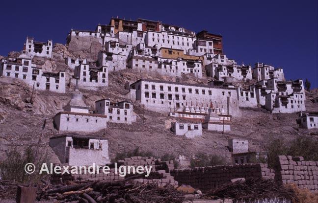 ladakh-buddhist-monastery