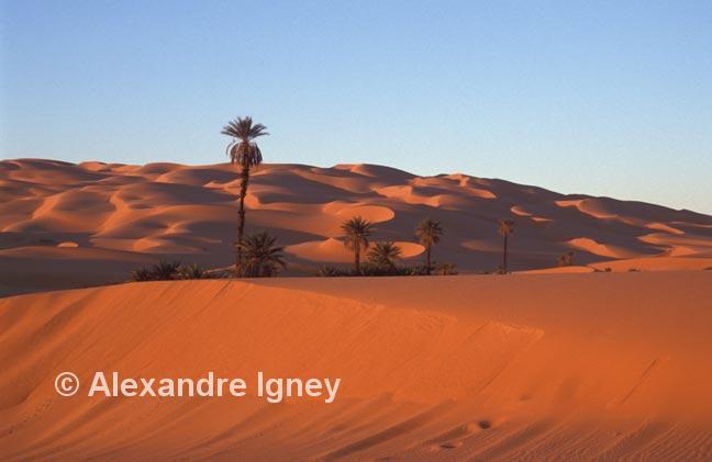 libya-desert-sunset