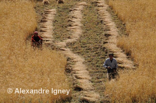 tajikistan-pamir-workers