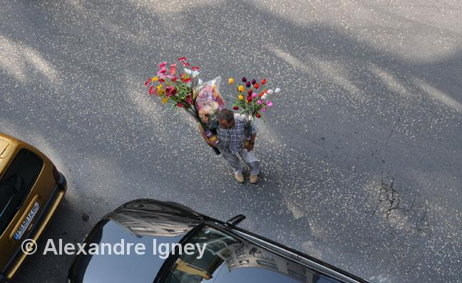 turkey-flower-seller