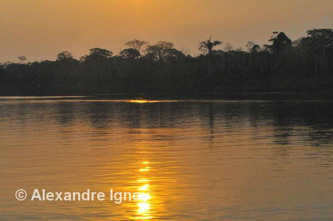 amazon-madeira-sunset