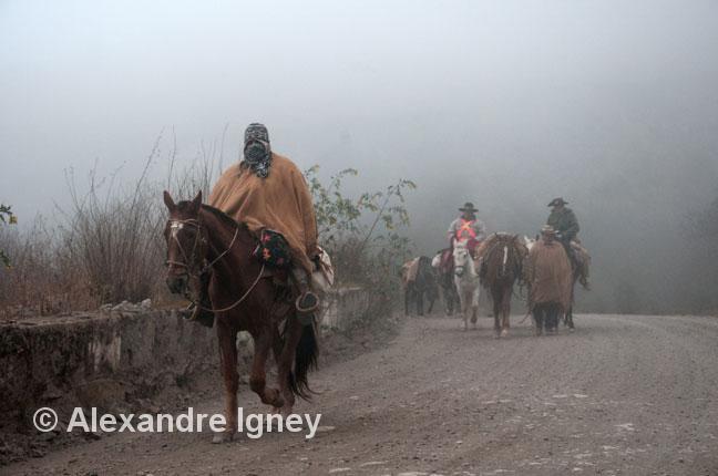 argentina-gauchos-pilgrims