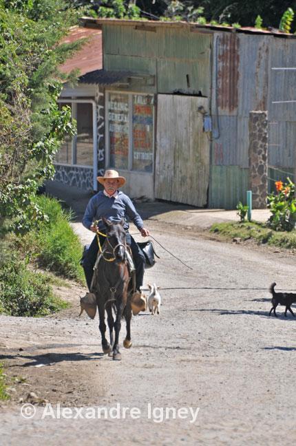 costarica-monteverde-horseman