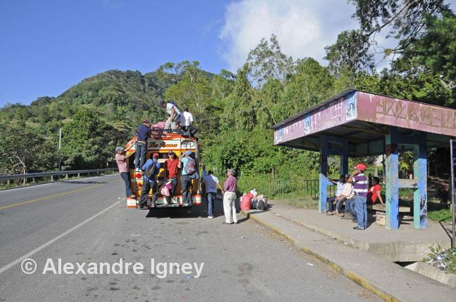 nicaragua-selvanegra-bus