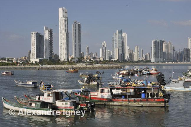 panama-skyline-fishing
