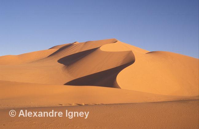 algeria-sahara-dune