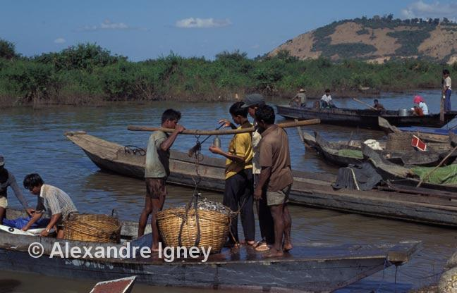 fishing trade near Angkor Wat