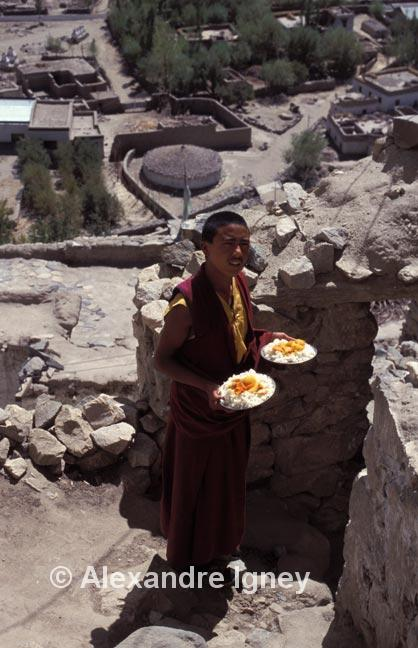 ladakh-buddhist-monk