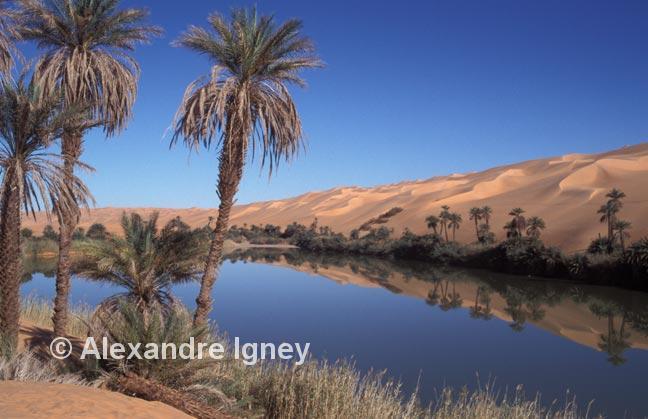 libya-desert-lake
