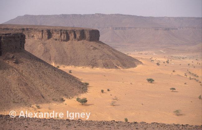 mauritania-adrar-desert