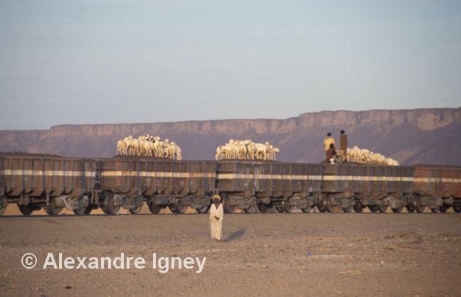 mauritania-ore-train