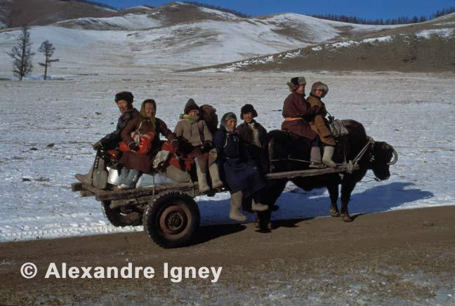 mongolia-steppe-nomads