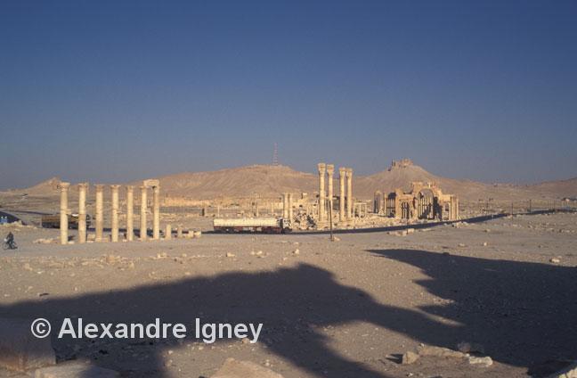 syria-palmyra-ruins