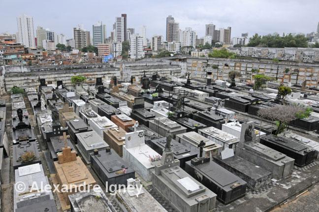 brazil-salvadordabahia-cemetery