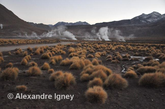 chile-eltatio-geyser