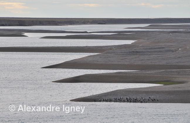 patagonia-peninsulavaldes-landscape